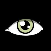 5reasons_Wahrnehmung_grün 2